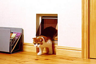 Cat door in every door in the house!