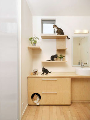 Cat house under the bathroom sink.