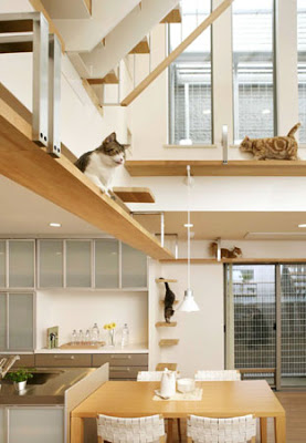 Cat walk beams that built in open air space.